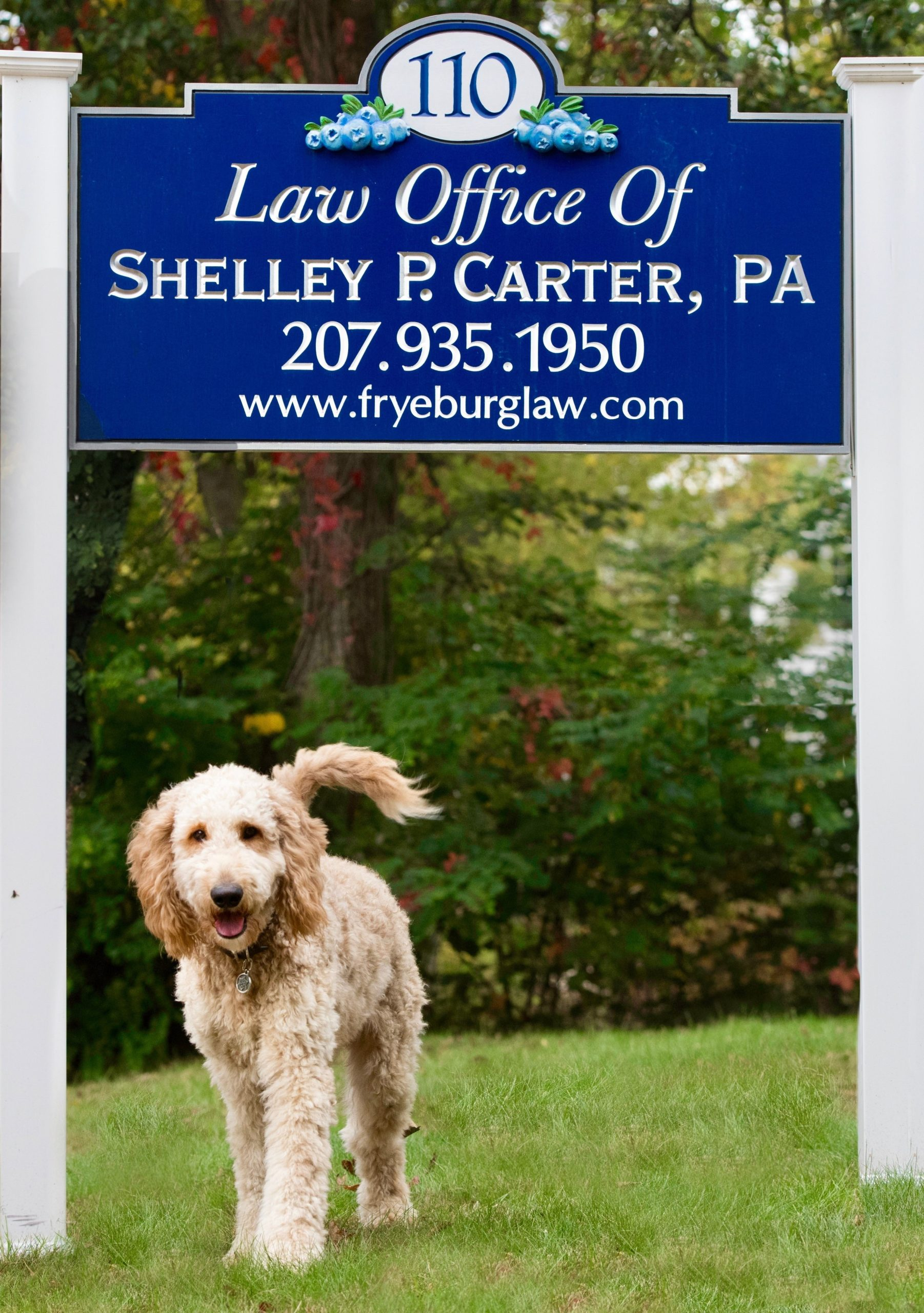 Baxter's business card